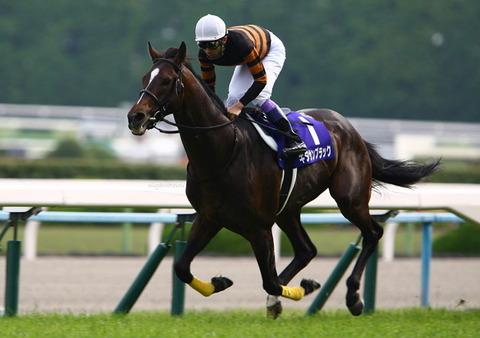 【競馬】種牡馬入りのキタサンブラック、初年度の種付け料がとんでもない額にwwwww