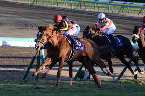 【競馬】ホープフルS5着ナスノシンフォニー 左前肢に屈腱炎を発症 今後については未定